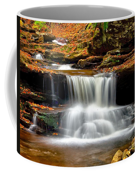 Waterfall Coffee Mug featuring the photograph Cascades At Ricketts Glen by Nick Zelinsky