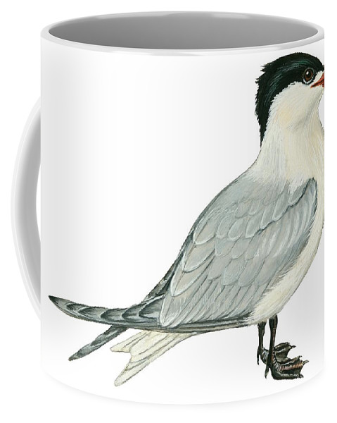 No People; Horizontal; Side View; Full Length; White Background; One Animal; Wildlife; Close Up; Illustration And Painting; Zoology; Bird; Wing; Feather; Beak; Grey; Black; Web; Tail; Caspian Tern; Sterna Caspia Coffee Mug featuring the drawing Caspian Tern by Anonymous