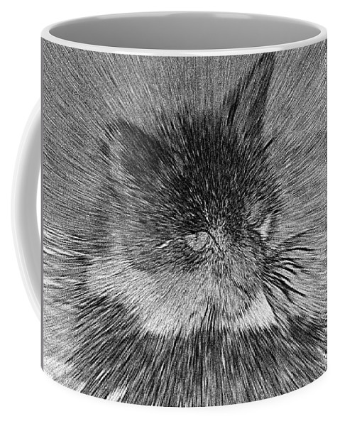 2d Coffee Mug featuring the photograph Cat - India Ink Effect by Brian Wallace