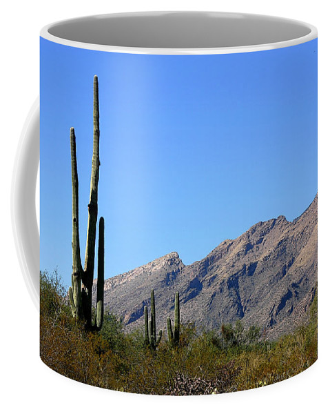 Mountain Coffee Mug featuring the photograph Catalinas by Joe Kozlowski