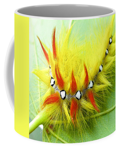 Insect Coffee Mug featuring the photograph Caterpillar 2 by Ingrid Smith-Johnsen
