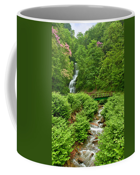 Waterfall Coffee Mug featuring the photograph Cathedral Falls by Mary Almond