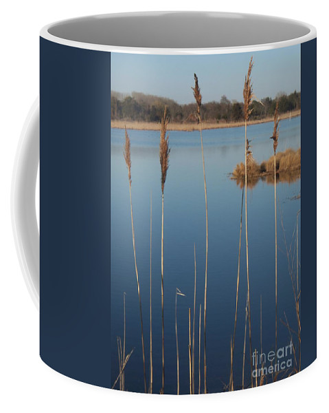 Cattails Coffee Mug featuring the photograph Cattails Cape May Point Nj by Eric Schiabor