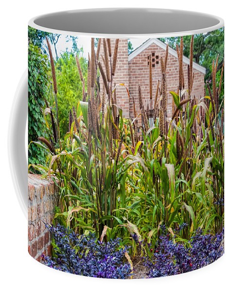Botanical Coffee Mug featuring the photograph Cattails by Kathleen K Parker