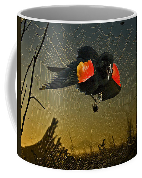 Red Wing Blackbird Coffee Mug featuring the photograph Caught Up by Rob Mclean