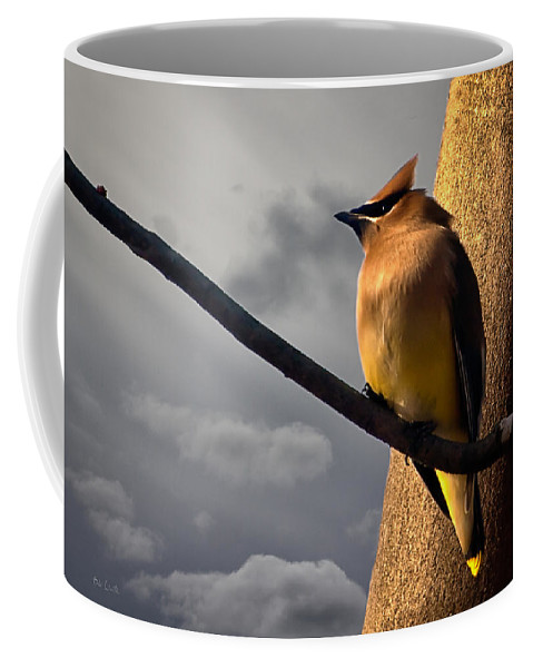 Cedar Waxwing Coffee Mug featuring the photograph Cedar Waxwing by Bob Orsillo