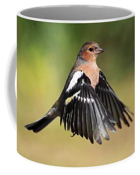 Chaffinch Coffee Mug featuring the photograph Chaffinch In Flight by Grant Glendinning
