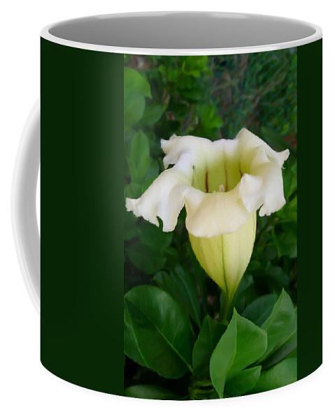 Chalice Vine Flower Coffee Mug featuring the painting Chalice Vine Flower 9 by Jeelan Clark
