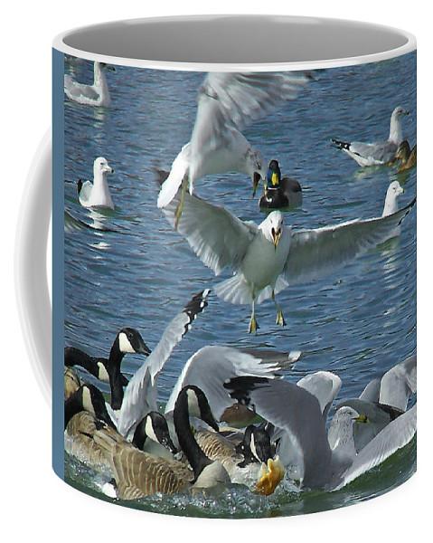 Birds Coffee Mug featuring the digital art Chaotic Behavior by Ernie Echols