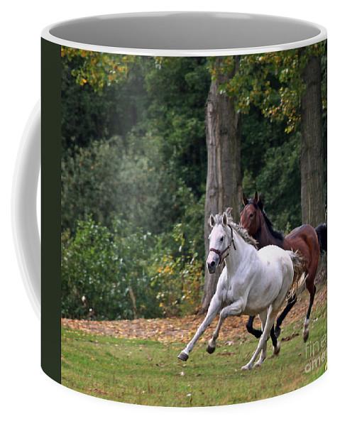 Horse Coffee Mug featuring the photograph Chasing The Wind by Angel Ciesniarska
