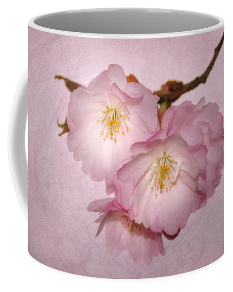 Cherrie Coffee Mug featuring the pyrography Cherrie Blossom by Steffen Gierok