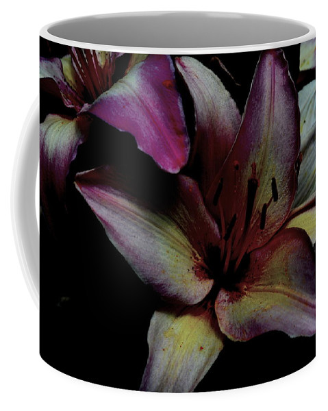 Chiaroscuro Coffee Mug featuring the photograph Chiaroscuro Lilies by Kathy Barney