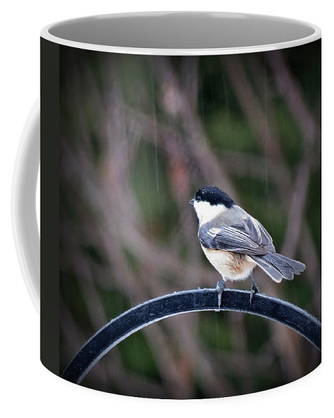 Coffee Mug featuring the photograph Chickadee In The Rain by MTBobbins Photography