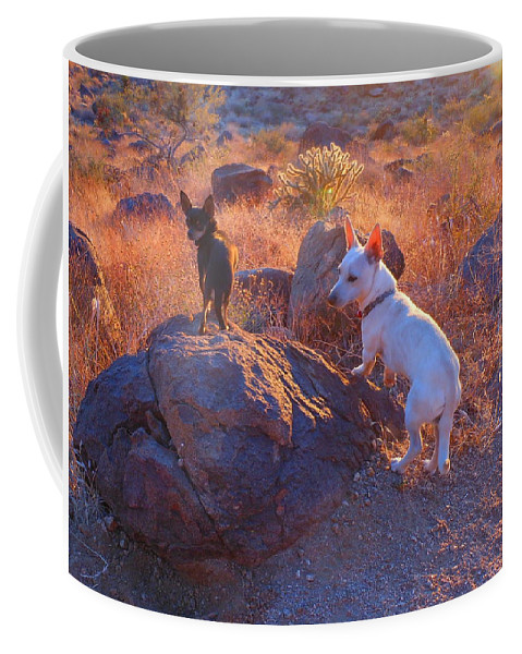 Friend Coffee Mug featuring the photograph Chico And Paco The Mountain Dogs by James Welch