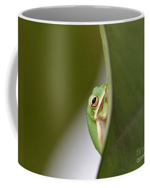 Frog Coffee Mug featuring the photograph Chillin by Scott Pellegrin