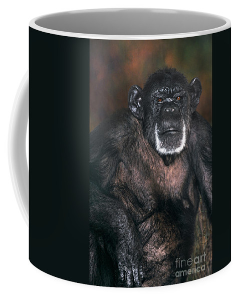 Chimpanzee Coffee Mug featuring the photograph Chimpanzee Portrait Endangered Species Wildlife Rescue by Dave Welling
