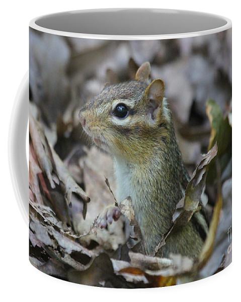 Rodent Coffee Mug featuring the photograph Chipmunk by Ken Keener
