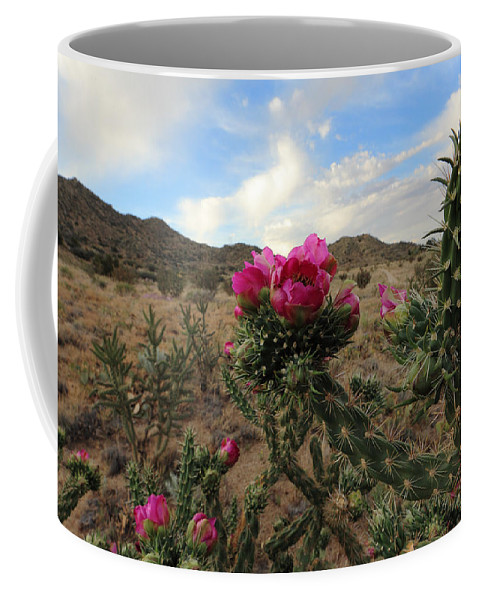 Cactus Coffee Mug featuring the photograph Cholla Cactus Blooming In The Sandia Foothills by Alan Vance Ley