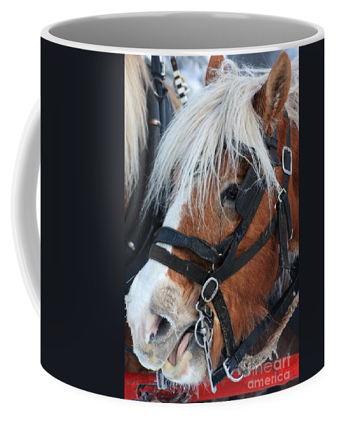 Alyce Taylor Coffee Mug featuring the photograph Chomping On The Bit by Alyce Taylor