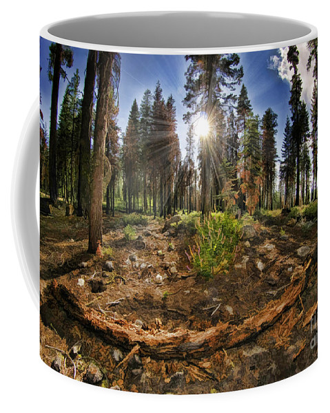 Coffee Mug featuring the photograph Chop Up Log by Blake Richards