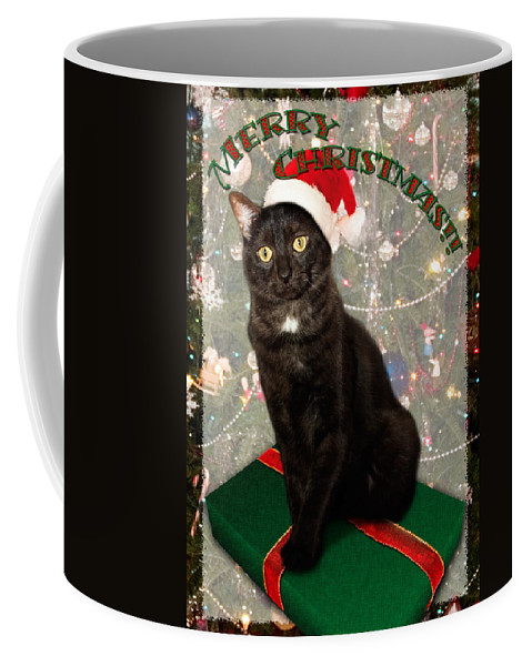 3scape Coffee Mug featuring the photograph Christmas Cat by Adam Romanowicz