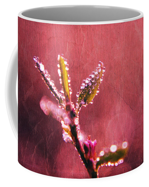 Raindrops Coffee Mug featuring the photograph Circles From Nature - C33st04a by Variance Collections