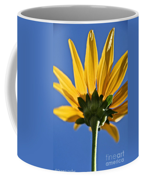 Flower Coffee Mug featuring the photograph Clearly by Susan Herber