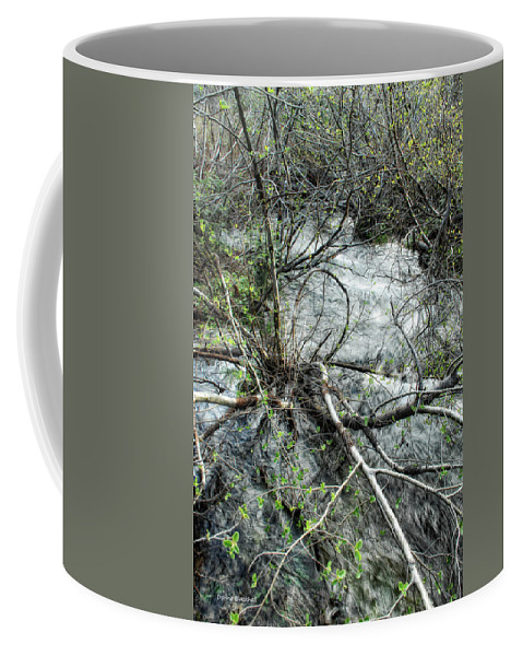 River Coffee Mug featuring the photograph Clinging To Your Roots by Donna Blackhall