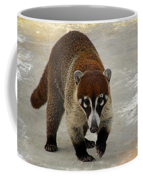 Animal Coffee Mug featuring the photograph Coatimundi 2 by Teresa Zieba