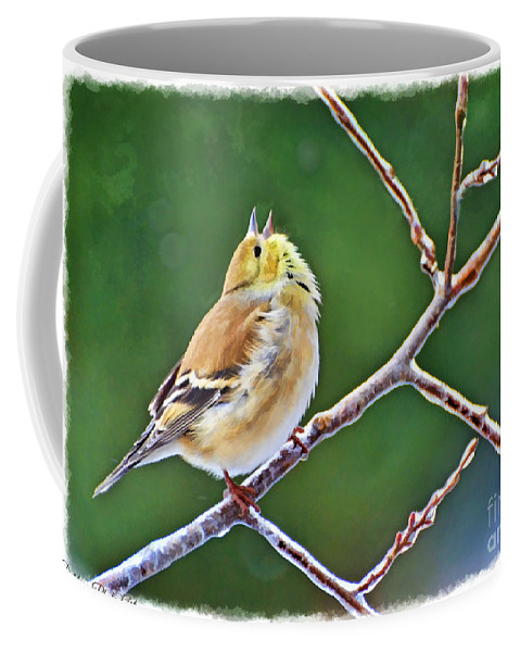 Nature Coffee Mug featuring the photograph Cock-a-doodle Doo Gold Finch - Digital Paint by Debbie Portwood