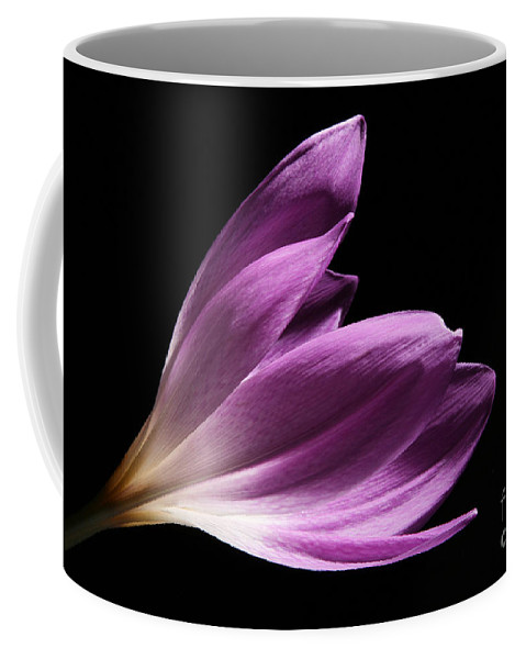 Flower Coffee Mug featuring the photograph Colchicum #4 by Judy Whitton