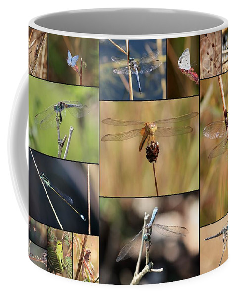 Dragonfly Coffee Mug featuring the photograph Collage Marsh Life by Carol Groenen