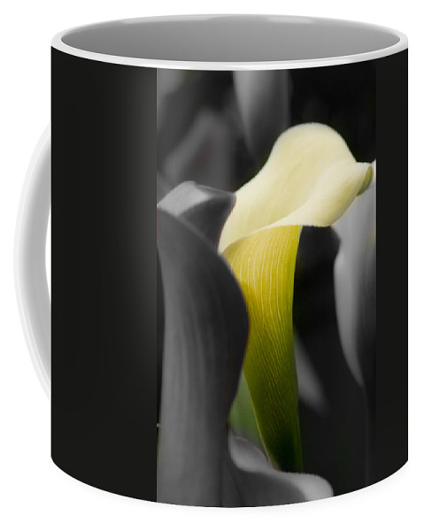 New England Photography Coffee Mug featuring the photograph Color On Black And White by Jeff Folger