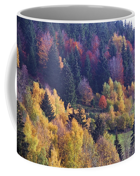 Forest Coffee Mug featuring the photograph Colored Landscape by Patrick Kessler