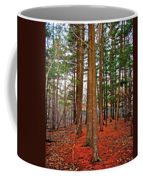 Forest Coffee Mug featuring the photograph Colorful Carolina Forest by Frozen in Time Fine Art Photography