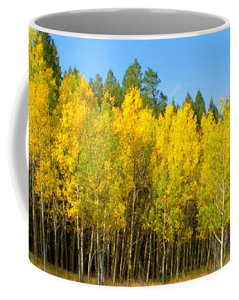 Colorful Colorado Turning Aspens Mountain Landscape Scene Coffee Mug featuring the photograph Colorful Colorado 2 by Brian Harig