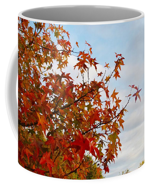 Fall Coffee Mug featuring the photograph Colorful Fall Leaves by Sharon Popek