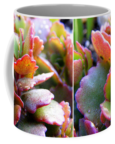Stereo Coffee Mug featuring the photograph Colorful Succulents In Stereo by Duane McCullough