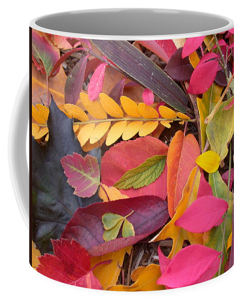Autumn Coffee Mug featuring the photograph Colors Of Autumn by Shane Bechler