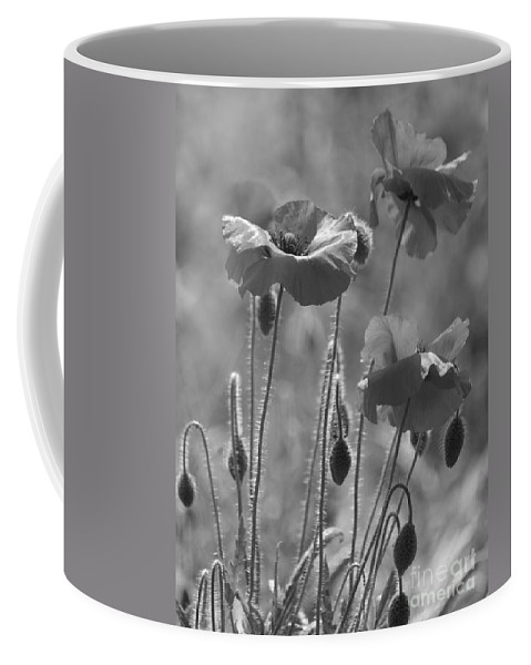 Poppies Coffee Mug featuring the photograph Colour Blind Poppies 1 by Carol Lynch
