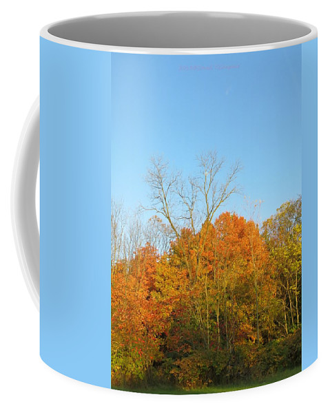 Autumn Colours Coffee Mug featuring the photograph Colourful Time by Sonali Gangane