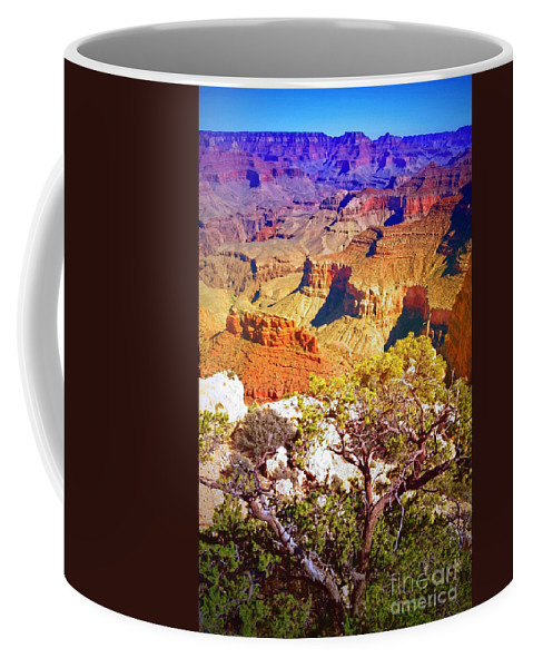 Layers Coffee Mug featuring the photograph Colours Within The Canyon by Tara Turner