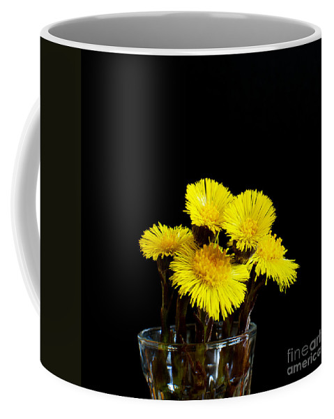 Medicine Coffee Mug featuring the photograph Coltsfoot Bouquet by Kennerth and Birgitta Kullman