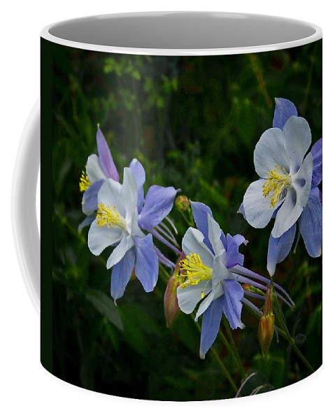 Artwork Coffee Mug featuring the photograph Columbines by Ernie Echols