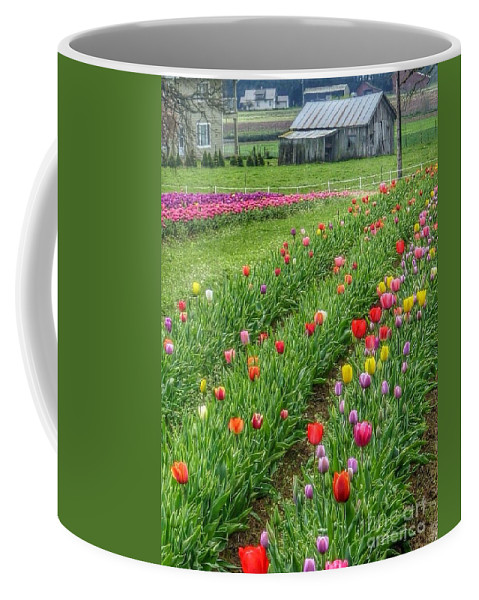 Come See Tulips Coffee Mug featuring the photograph Come See Tulips by Susan Garren