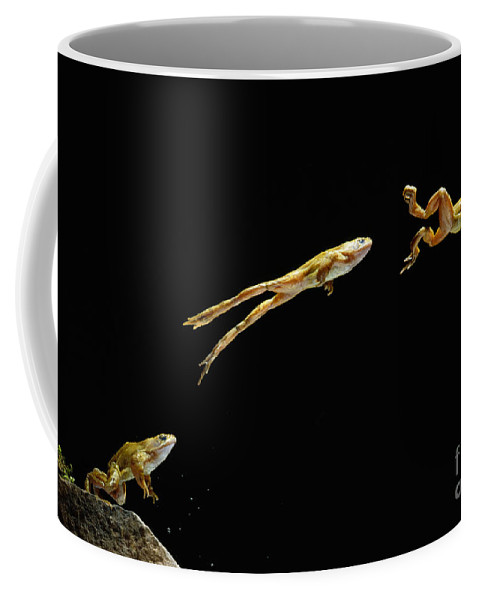 Animal Coffee Mug featuring the photograph Common Frog Leaping by Stephen Dalton