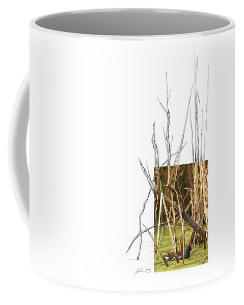 Common Moorhen Coffee Mug featuring the photograph Common Moorhen by Andrew McInnes