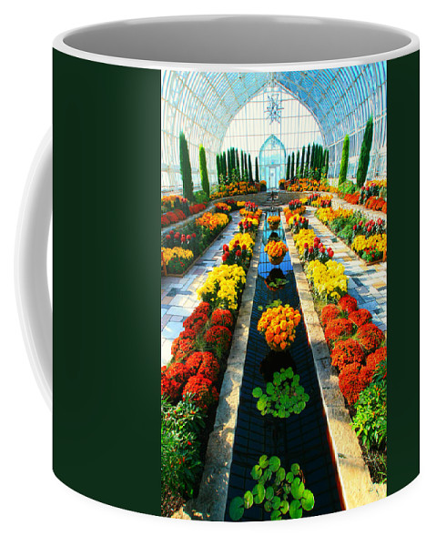 Fall Coffee Mug featuring the photograph Como Conservatory's Fall Display. St Paul Minnesota. by Amanda Stadther