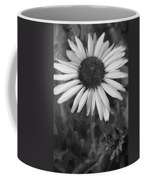 Cone Flower Coffee Mug featuring the photograph Coneflower And Dusty Miller Bw by Lesa Fine