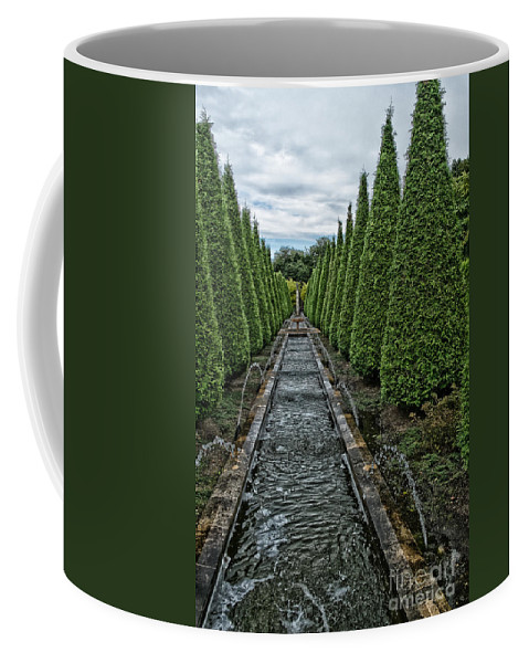 Conifer Water Feature Coffee Mug featuring the photograph Conifer Lined Water Feature by Brothers Beerens